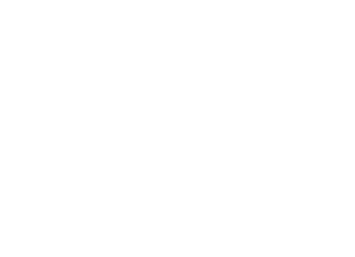 Freeport MI Freeport Homecoming Logo